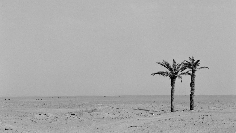 Kuwait-20110408-irakfilm-145